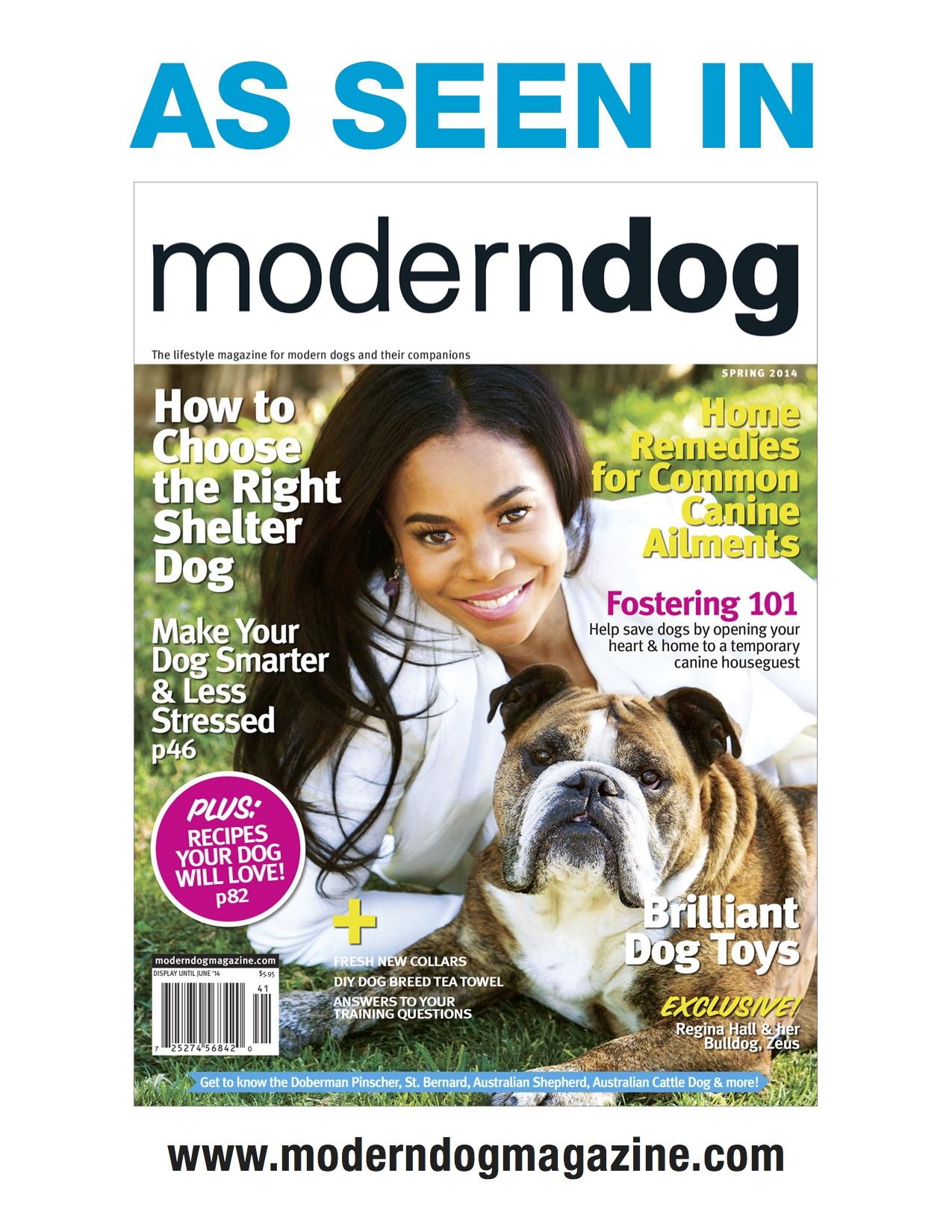 modern dog spring 2014